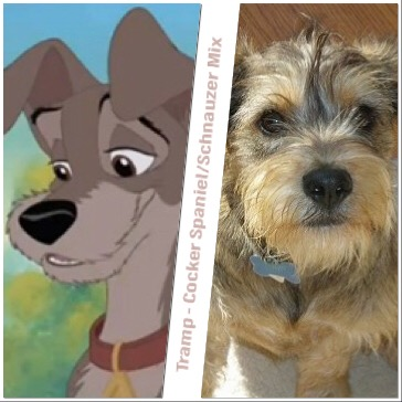 What Are The Dog Breeds Of These Famous Disney Films Mad Meaning
